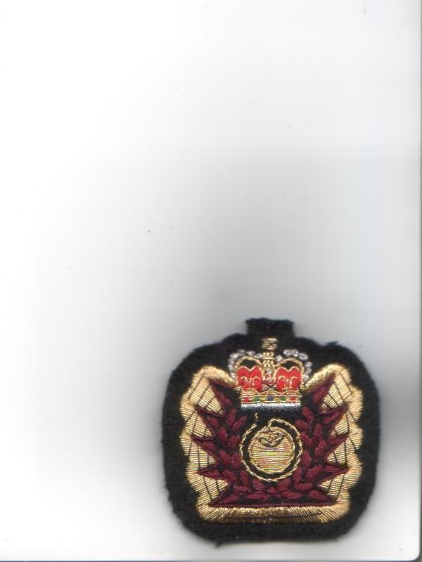 Eod Hazard Badge